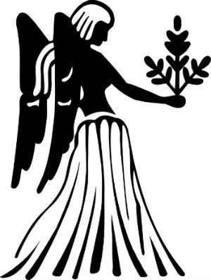 virgo negro